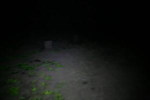 http://lukassander.com/files/gimgs/th-35_IMG_5255_v2.jpg